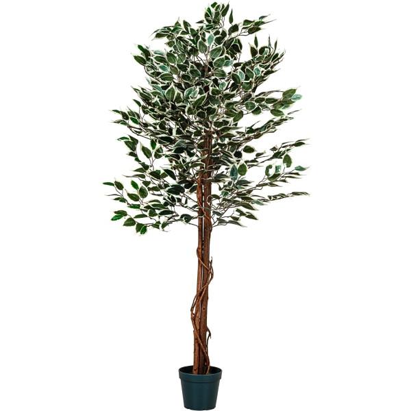 PLANTASIA® Großer grüner Ficus Baum, Kunstbaum, 160cm