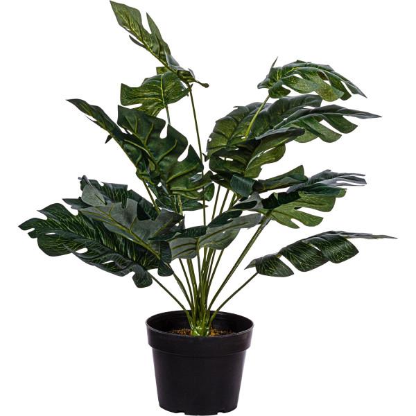 PLANTASIA® Monstera Kunstpflanze, 60 cm, 18 Blätter