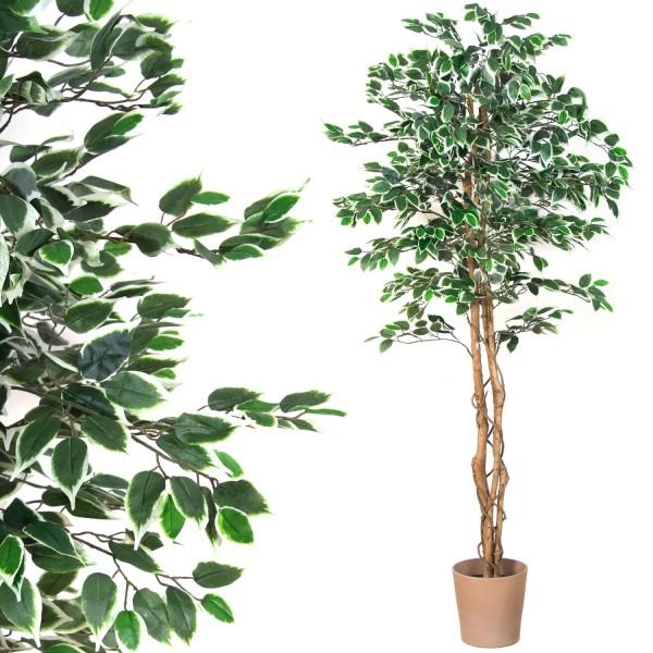 Großer grüner Ficus Baum, Echtholzstamm, Kunstbaum 190cm