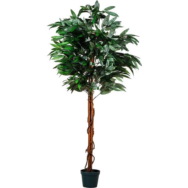 PLANTASIA® Mangobaum, Kunstbaum, Kunstpflanze, 180cm